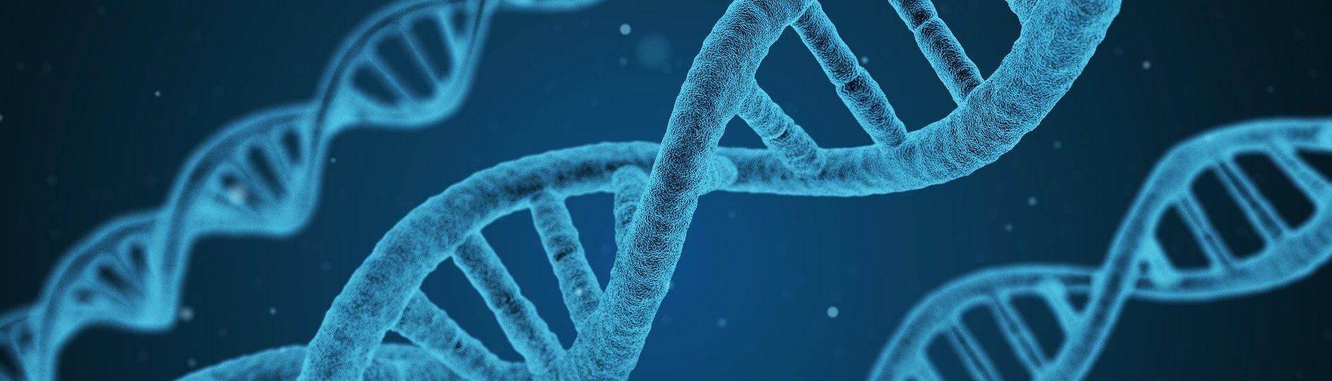 Effective RNA | DNA Services